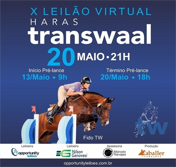 X Leilão Virtual do Haras Transwaal 2019.